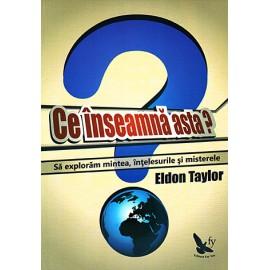 Ce înseamnă asta? să explorăm mintea, înţelesurile şi misterele - Eldon Taylor