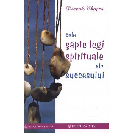 Cele 7 Legi Spirituale ale Succesului - Deepak Chopra